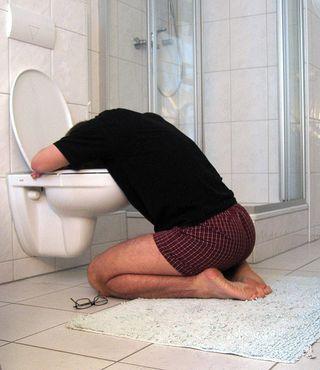 Head in toilet